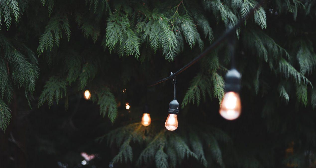 Comment mettre en lumière le jardin?